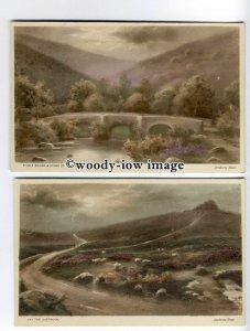 ar0440 - Hay Tor on Dartmoor, Fingle Bridge - Artist - Andrew Bear - 2 Postcards