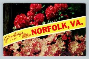 Norfolk VA- Virginia, General Greetings, Banner, Chrome Postcard