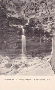 Japanese Falls Grand Canyon Platte Clove New York Albertype
