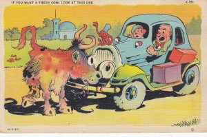 Cow blocks car , 1930-40s