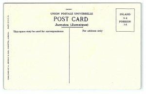 Greetings from Jamaica, Bournemouth Bath, Kingston, Jamaica Postcard *7C3