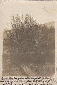 RP: WENATCHEE , Washington , 1912 ; Girl & Apple Tree