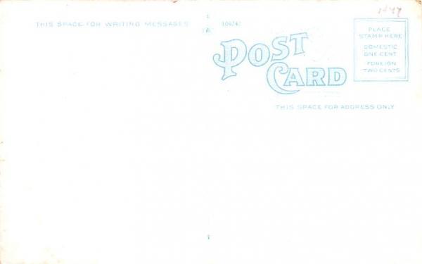 Delaware River Port Jervis, New York Postcard
