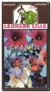 Image Flowers Leonard Lille Salpigossis