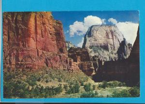 Postcard Great White Throne Zion National Park  Utah   # 225