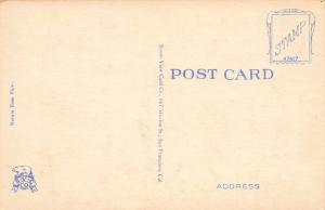 Russian Hill & Mt. Tamalpais, San Francisco, California, Early Postcard, Unused