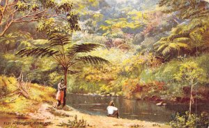Forest Scene Fiji Islands 1910c Tuck postcard