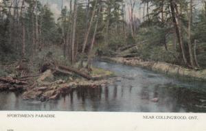 COLLINGWOOD , Ontario , Canada , 1900-10s ; Sportsman Paradise