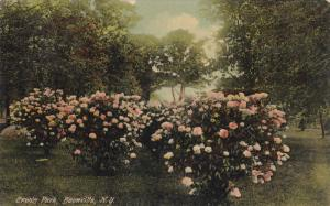 Erwin Park, Flowers, BOONVILLE, New York, PU-1910