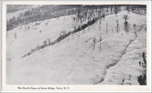 North Slope at Snow Ridge, Turin NY