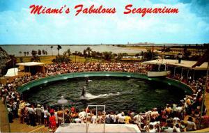 Florida Miami Seaquarium Cha-Cha Tail Dancing Porpoise