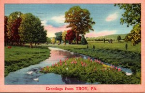 Pennsylvania Greetings From Troy 1959