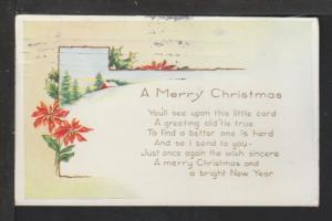 Merry Christmas,Poinsettia Postcard
