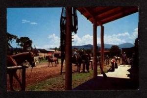 NH Six Gun City Amusement Park JEFFERSON NEW HAMPSHIRE postcard