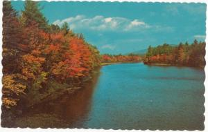 Autumn in New England, used Postcard
