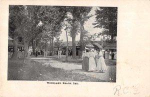 Woodland Beach  Delaware Amusement Park  Antique Postcard RR651