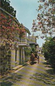 Florida St Augustine Romantic Aviles Street