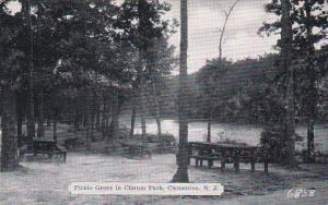New Jersey Clementon Picnic Grove In Clinton Park Dexter Press