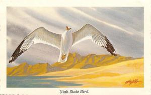 Utah State Bird~Sea Gull in Flight Over Desert~Artist Ken Haag~1968 Postcard