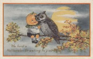 Pumpkin Head HALLOWEEN Postcard, 00-10s ; Owl