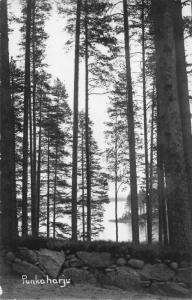 Finland Punkaharju postcard