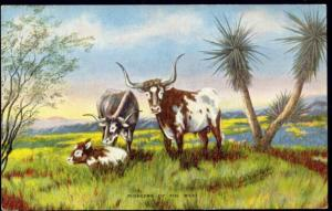 artist signed DUDE LARSEN, Pioneers of the West, Cows (1940s)