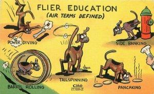 Aviation Dog Maneuvers Pilot Training Comic Humor Military Postcard Kropp 4780