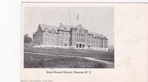 ONEONTA, New York, PU-1905; State Normal School