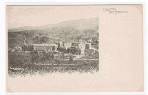 Homestead Virginia Hot Springs 1905c Albertype postcard