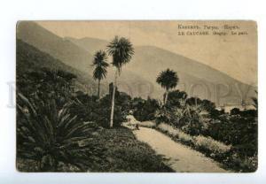 137942 Caucasus Abkhazia GAGRA Park Gagry Vintage postcard