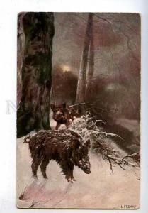 182916 Wild boar by Fromme in winter Vintage postcard