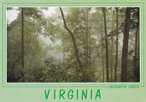 George Washington National Forest Virginia
