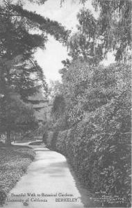 Berkeley California 913 Postcard Botanical Gardens Students 11520