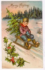 Boy Sliding Down Hill with Tree