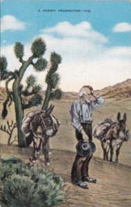 A Desert Prospector With Donkeys 1944