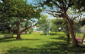 Texas Waco Scene In Cameron Park
