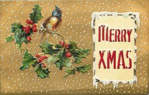Christmas~Fluffy Head Blue Bird on Holly Berry Branch~Snow in Gold Sky~Embossed