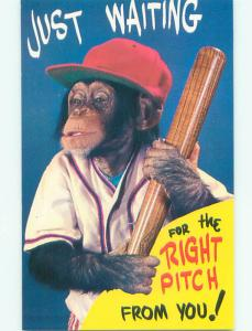 Unused Pre-1980 MONKEY IN BASEBALL UNIFORM HOLDING BAT J2736