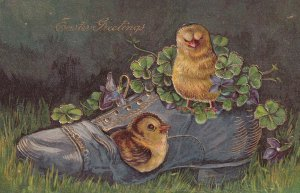EASTER; 1900-10s; Greetings, Chicks in an old shoe with four leaf clovers, go...