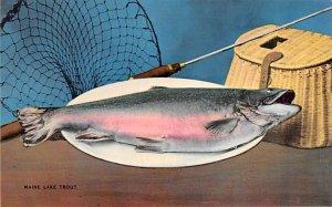 Maine Lake Trout Fishing Unused