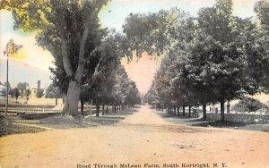 Road Through McLean Farm in Kortright, New York