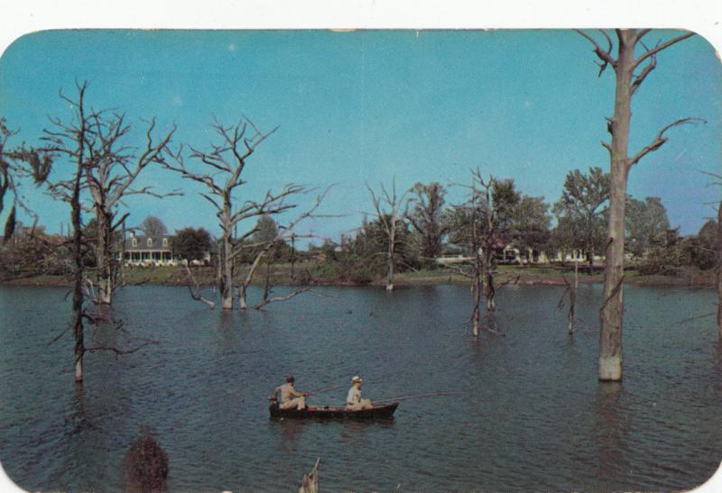 BAYOU DE SIARD, Monroe, Louisiana, 1954 used Postcard
