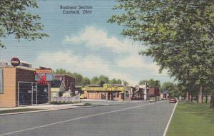 CANFIELD, Ohio, 1930-1940s; Business Section, Drug Store/Pharmacy, Laundry Dr...