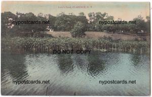 Lusk'e Pond, Clarence NY