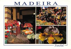 Portugal Funchal Madeira In the Market Flowers Postcard