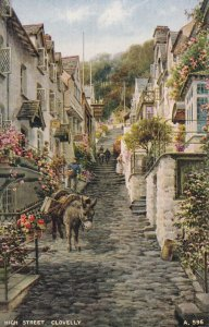 CLOVELLY, Devon, England, 1900-1910s; High Street, Donkey