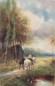 Postcard Animals nature artistic horse riding road