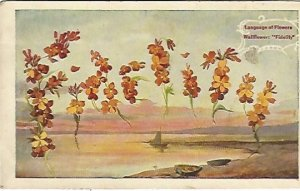 Fidelity Wallflower Flowers Language of Flowers Vintage Postcard over 100 Years