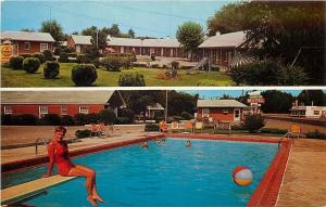 Guthrie Kentucky~Covingtons Motel~Bathing Beauty Poses~Diving Board~1960s