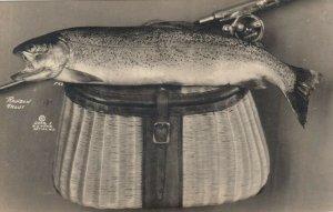 RP: ANTIGO , Wisconsin, 00-10s ; Rainbow trout & Basket